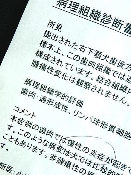 20180826ナルーちゃん病院