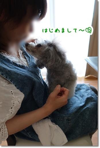 IMG_8652.jpg