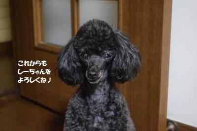 縺励★縺ュ_convert_20180817134703