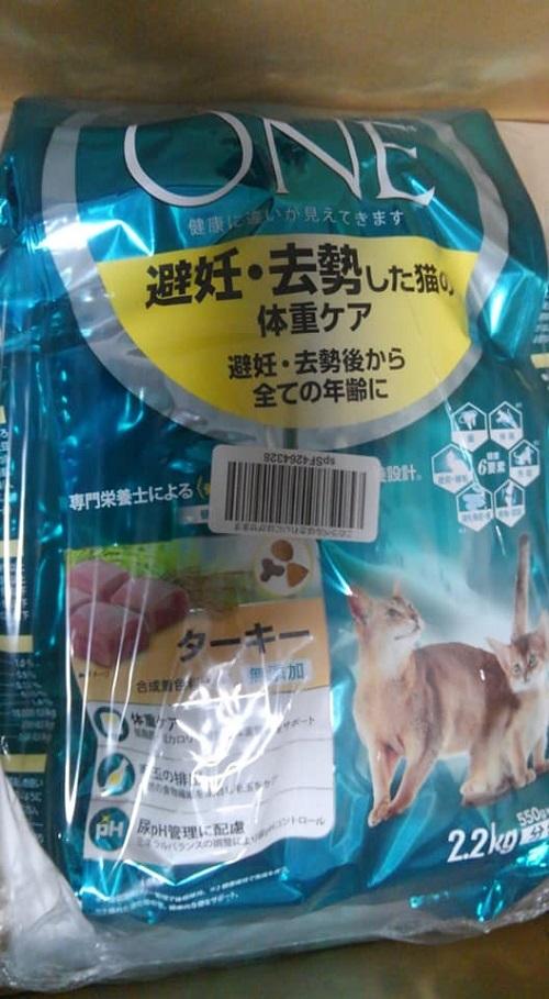 ナル&キチ里親様2018-10-11-01
