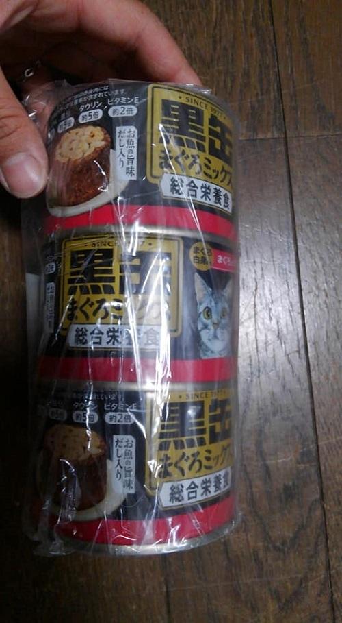 ナル&キチ里親様2018-10-11-02