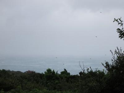 180930-2=大時化の前庭海fmPBR