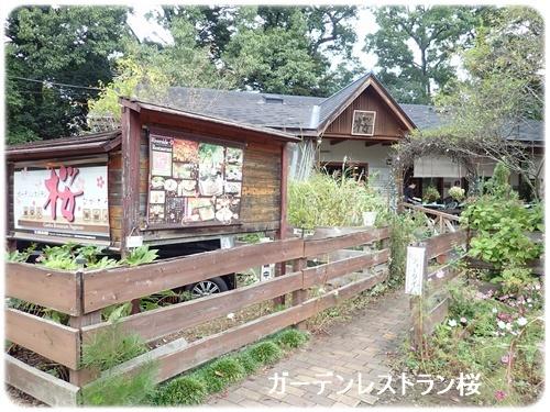 ガーデンレストラン桜