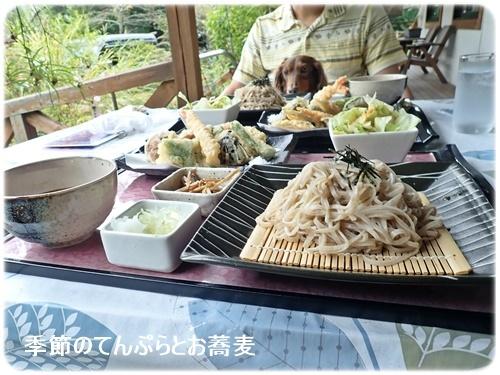 季節の天ぷらとお蕎麦