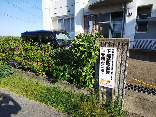 DSC_6547.jpg