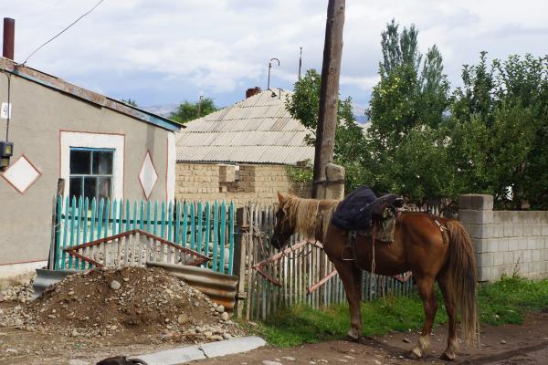 馬に乗って