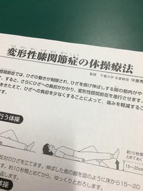 変形性膝関節症 ヒアルロンサン 堀江整形外科 豊川 御津 花屋 花夢