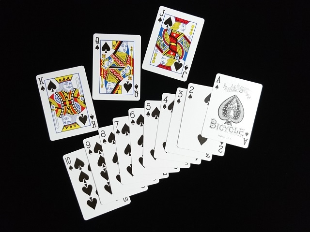 New Fan Back Playing Cards Black (BICYCLE) (6)