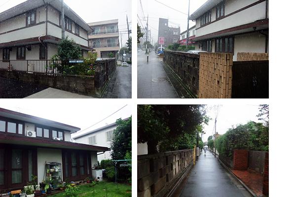 socio_old house