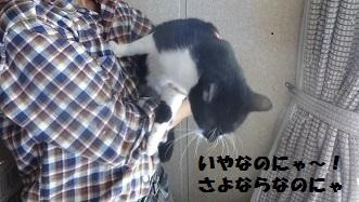2えぽDSC03179