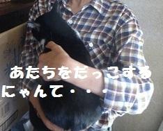えぽDSC03178