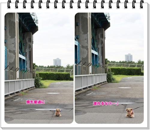 crea180920-3.jpg