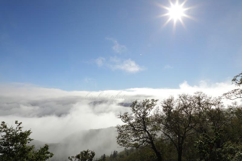 黒岳登山道から 46920001署名入りedited