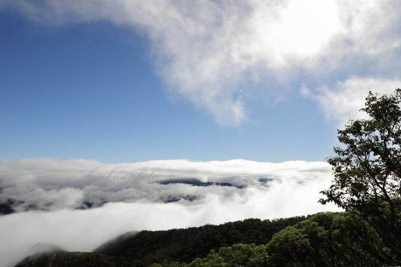 黒岳登山道から 46950001署名入りedited