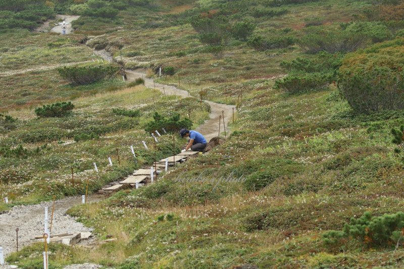 登山道を整備する男性 48070001署名入りedited