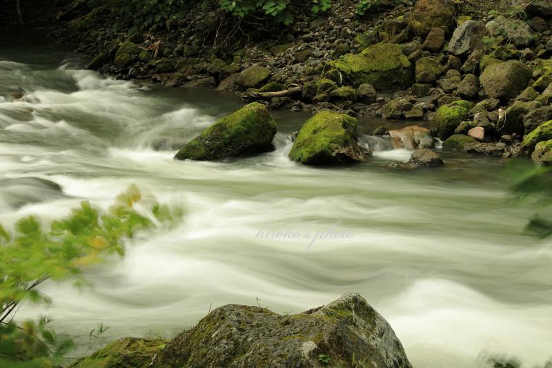 川の流れ 49160001署名入りedited