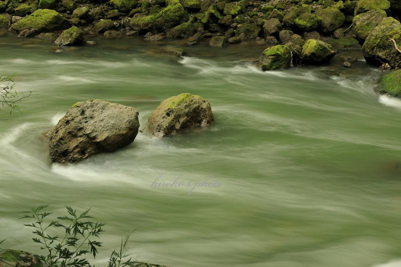 川の流れ 49300001署名入りedited