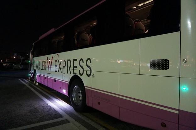 ピンクバス
