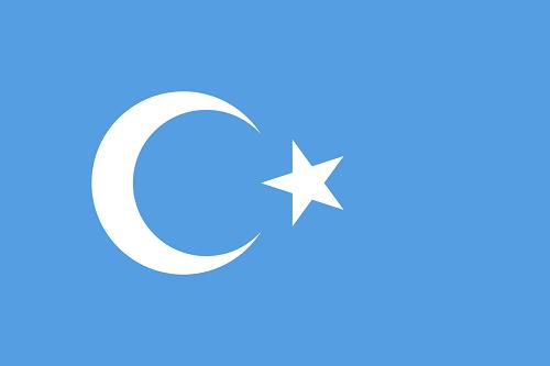 東トルキスタン共和国 国旗