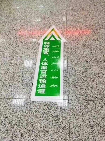 2017年秋、中国の新疆ウイグル自治区カシュガルの空港床上に現れた通行標識です。簡体字で「特殊旅客、人体器官運輸通路」と書かれています。「特殊旅客」はともかく、「人体器官」とは一体何か?