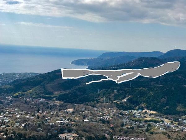 伊豆高原メガソーラー建設予定地。東京ドーム10個分もの森を伐採し、建設予定地の総敷地面積は東京ドーム20個分とのこと。