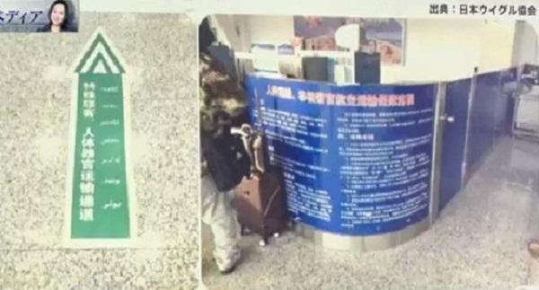 ウイグル自治区カシュガル空港にある人体器官輸送通路。ウイグルの空港に人体器官輸送通路