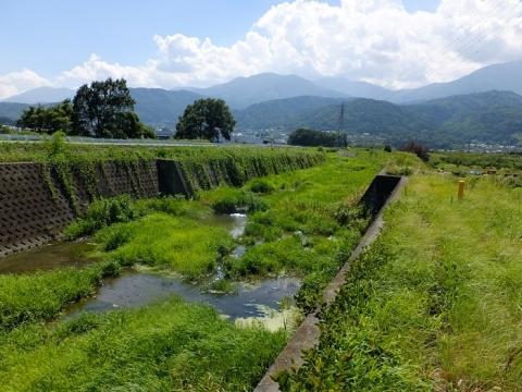井路縁川地下水路トンネル呑口・排水施設から見た堰野川
