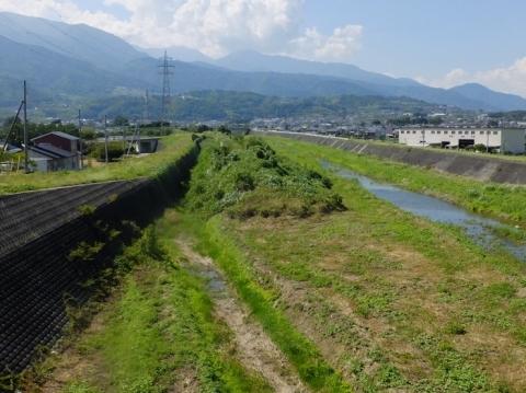 五明大橋より坪川上流を望む