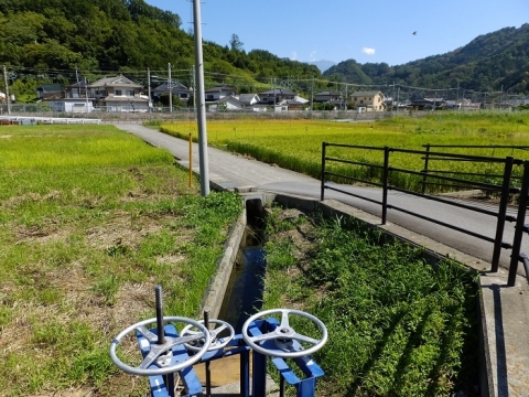 黒沢開田の用水路