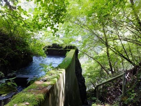 白丸ダム魚道・地下トンネル入口