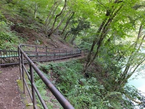 白丸ダム調整池の巡視路