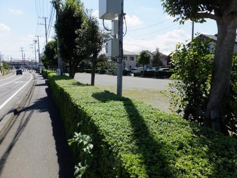 原宿堀公園