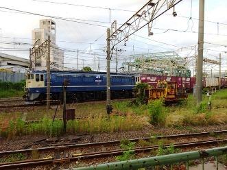 hamakawasaki31.jpg