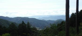 鍋谷峠和歌山側の絶景