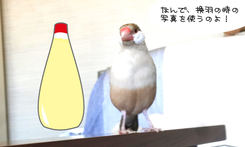 マヨネーズ体形対決_2