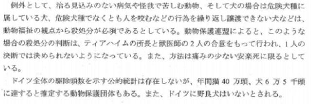 武井泉 9
