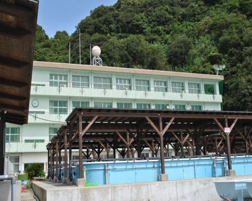 大島産業振興センター