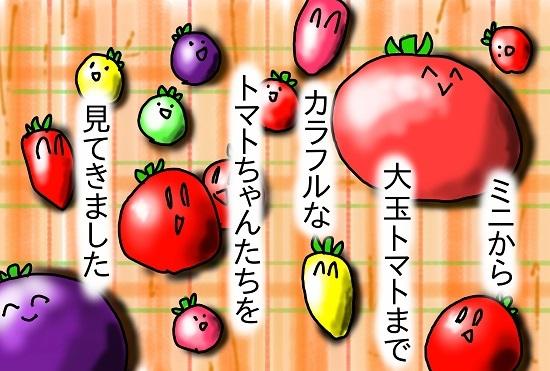 色々トマト