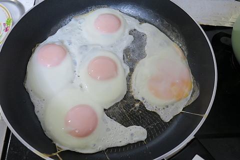 c&egg13