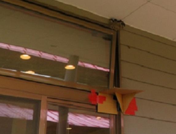 7Q04S 燕の巣 0804