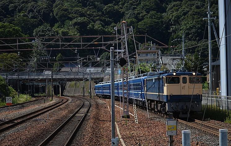 DSC_3717s.jpg