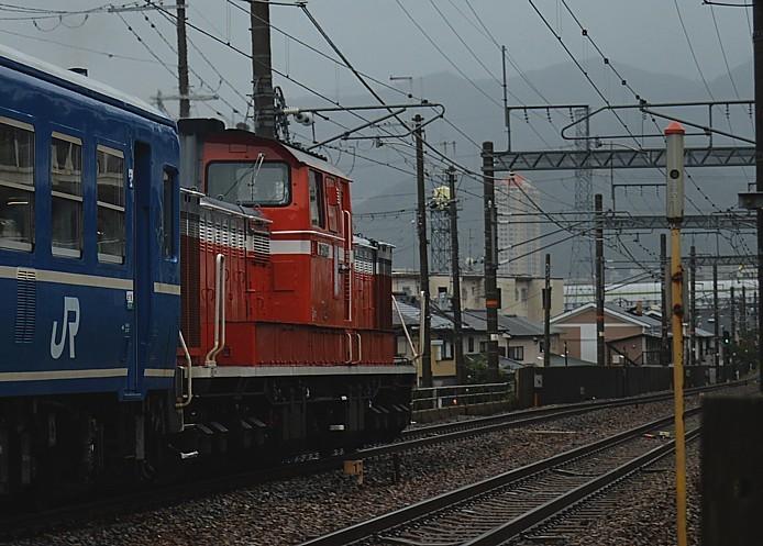 DSC_3853s.jpg