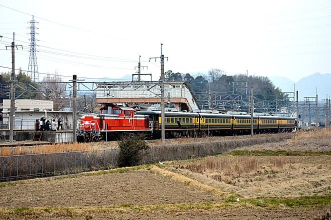 DSC_5444q.jpg