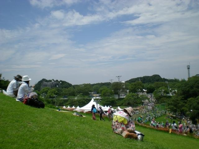 野外フェス 音楽 イベント