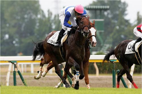 ロードブルームーン新馬戦