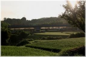 180814E 038水田を渡る橋32