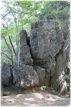 180820E 038岩茸石23