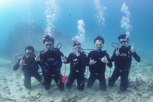 ファミリー体験ダイビング