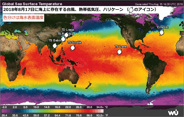 nt-0817-sixth日本の海のおそうじ会