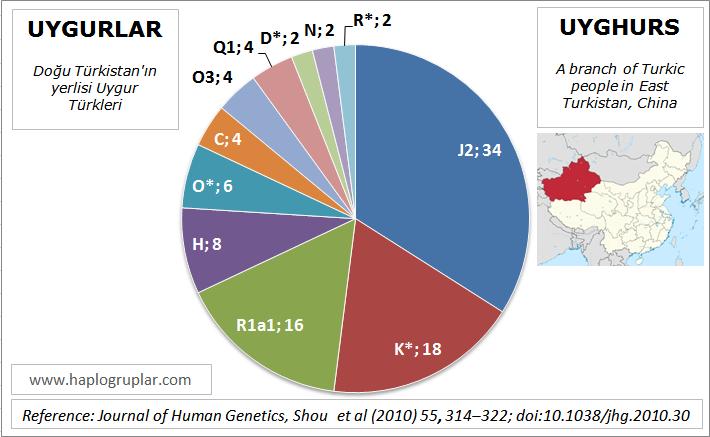 uyghurs-in-china-ydna-haplogroups-dogu-turkistan-uygurlar-ydna-haplogrup-dagilimi.png